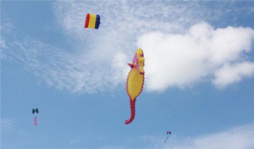 参与动手绘画风筝