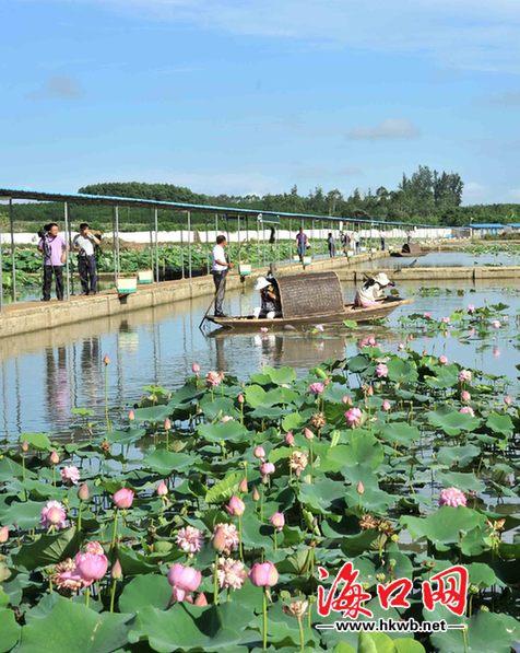 风景迷人的生态休闲农庄,成为乡村游的一大特色.