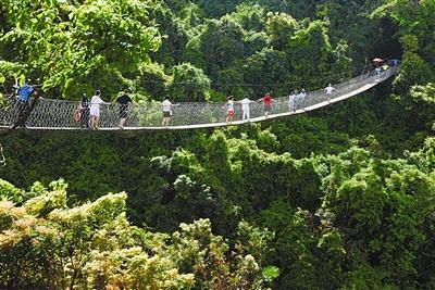 热带天堂森林公园董事长 自然成就 传奇 景区