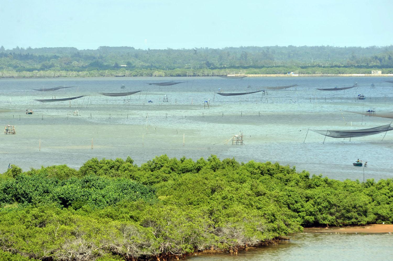 侨乡海南文昌市椰林湾海滨,渔民在港湾周围遍布网兜捕鱼捞虾.