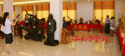 各式各样的根雕,奇石,盆景展现在职工们眼前,有的像雄鹰,有的像牡丹