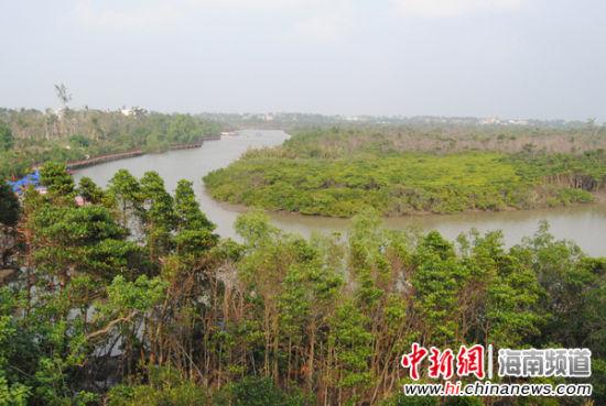 海口市演丰镇的东寨港红树林旅游区现成为海南省生态文明建设的新亮点
