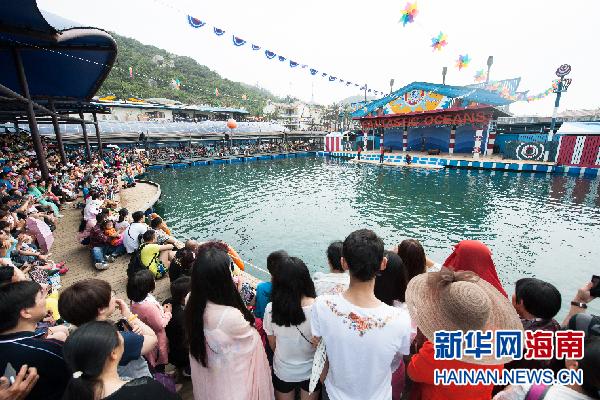 游客在分界洲岛海洋馆观看海豚