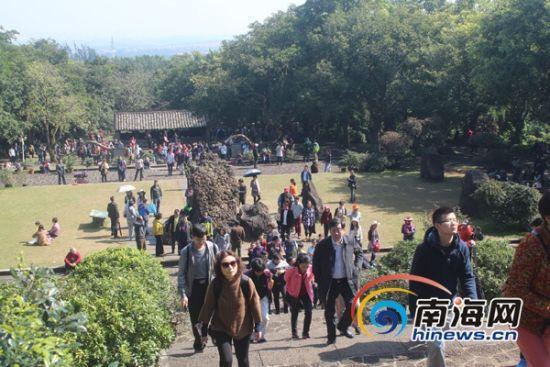 年初一海南18家乡村旅游点迎5万游客 同比增4.4%