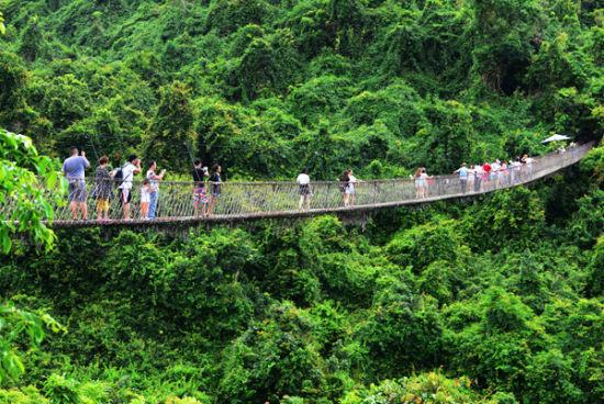 图为中外游客在海南三亚亚龙湾热带天堂森林旅游区参观游览的情景.