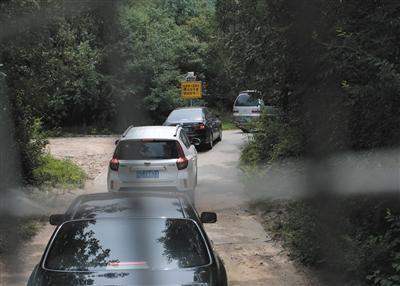昨日,八达岭野生动物园猛兽区,游客自驾车辆排队通行.