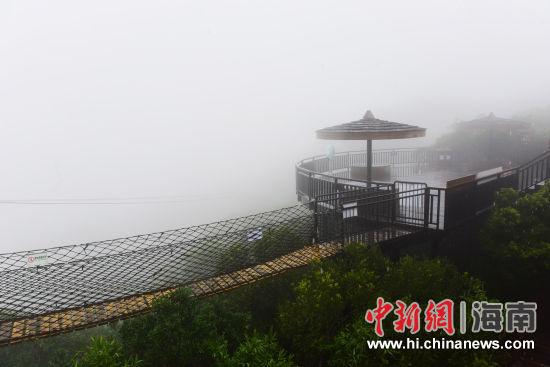 雨后的亚龙湾热带天堂森林旅游区山雾弥漫,宛如梦幻仙境.(黄庆优摄)