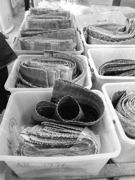 全国最大走私蟒蛇皮案财物明拍卖 竞买保证金25万