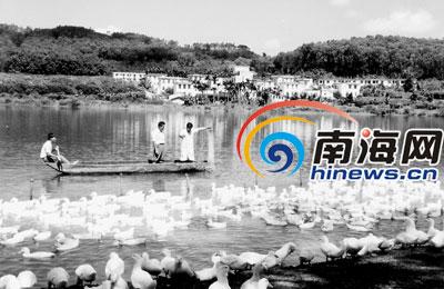 养殖鱼塘设计图_威海鱼塘投料机_鱼塘养殖收入