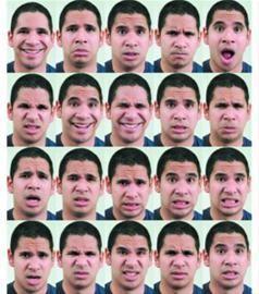 人类表情至少有21种图片