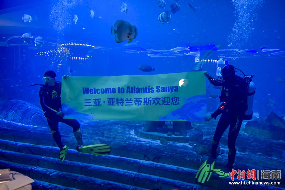 图为三亚亚特兰蒂斯酒店水族馆的潜水员在水下打出欢迎标语.图片