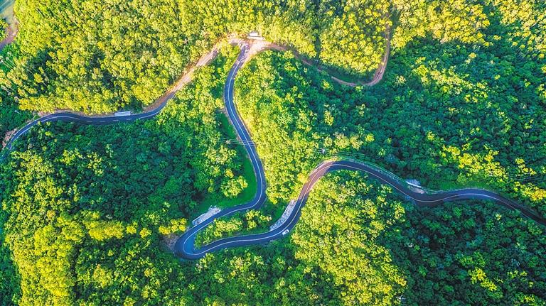 《最美山村路》 拍攝點:東方東河鎮 李金波 攝