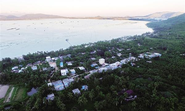 陵水南湾村:猴岛边的诗意乡村