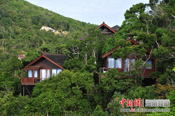 图为亚龙湾人间天堂鸟巢度假村云顶度假区外景.