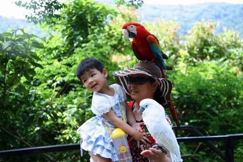 六一儿童节,小朋友在海南呀诺达景区与小动物们快乐合影