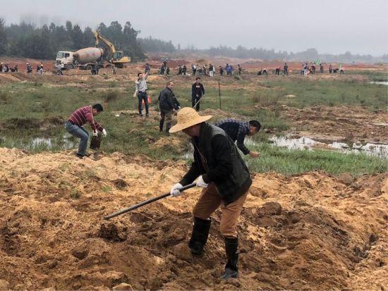 参加植树的干部职工有的挖树坑,有的拿树苗,相互默契配合,挖坑,栽树